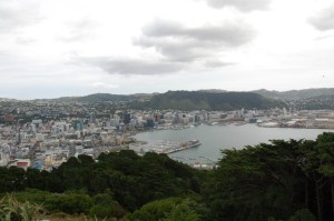 Auckland spread out from Cook's Lookout